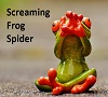 Screaming Frog Spider