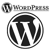 wordpress-100x100